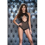 Fishnet and Lace Teddy